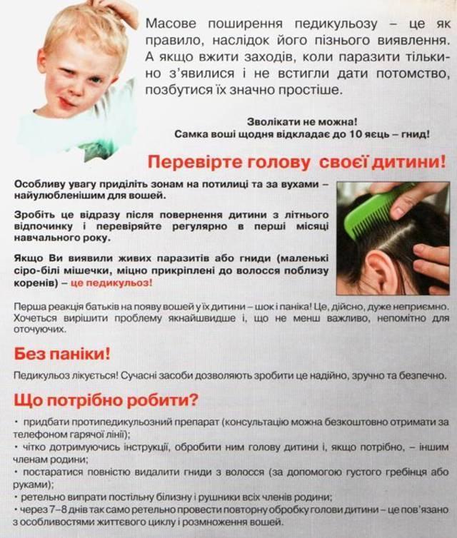 Картинки по запросу ПЕДИКУЛЬОЗ